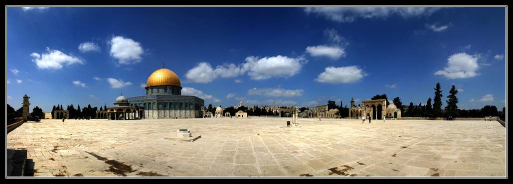 King David Tours - Israel Tour Guide